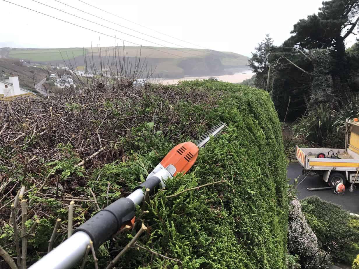 Hedge-trimming-st-mawgan